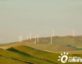 风电的六月飞雪:各地不利政策频出,做好迎接短期寒冬的准备