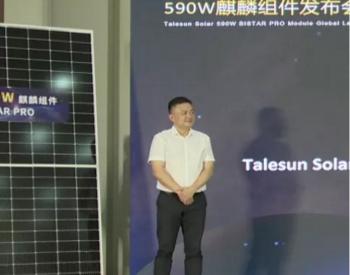 """<em>腾晖光伏</em>590W""""麒麟""""组件计划3GW产能,明年一季度发货"""