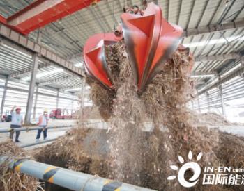 安徽滁州市超九成秸秆变身绿色财富