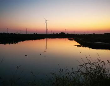 中电电机投资助力半年净利增逾4倍 转型抢占风电领域高地