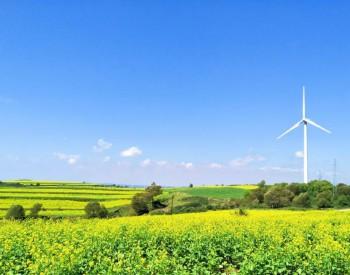 新能源发电正式进入<em>平价</em>时代