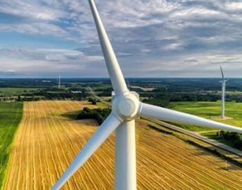 2020年1-7月国资能源企业<em>风电机组</em>采购项目全统计!(附分析及项目详情)