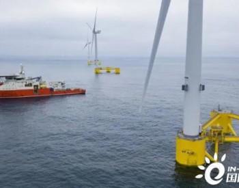道达尔合资公司向Rovco授予了价值100万英镑的浮式风电场勘测合同