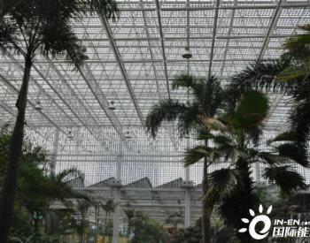 电谷城市低碳公园开业五周年 打造绿色生态发展新样本
