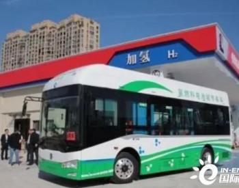 浙能集团大型国产氢气液化关键技术和装备研究取得重大突破