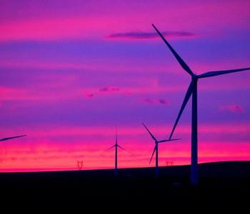 国家能源集团265台风机一年期定检项目公开招标!