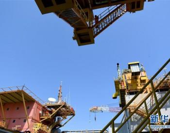 广东广州黄埔打造石化升级改造项目