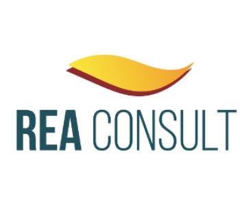REA Consult为中国投资者打开巴西绿色能源的快速通道