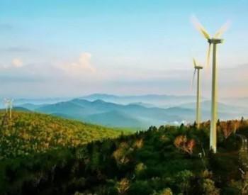 中标 华电500MW海上风电机组招标开标!明阳、金风进入候选!