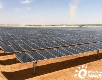 与最后一滴石油告别:阿联酋发展清洁能源