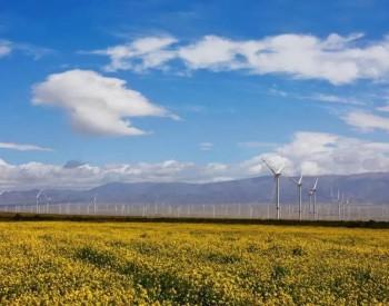 低油价拖累中海油中报净利降6成 海上风电发展圈定三个沿海地区