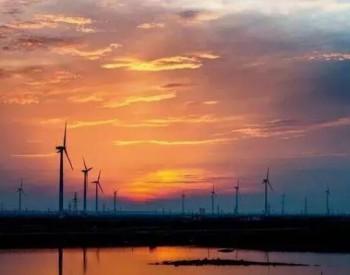 协鑫能科:厚积薄发 2020年底前并网1GW风电项目