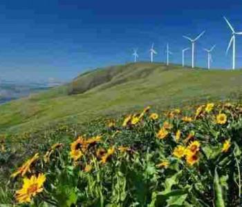 墨西哥能源部前副部长:中国<em>技术</em>帮助推动能源结构改革