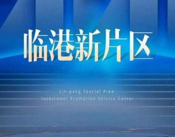 临港新片区揭牌一周年,上海电气持续推动高质量发展