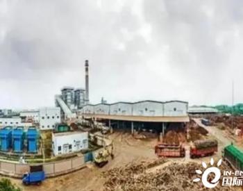 走进世界最大生物质发电厂