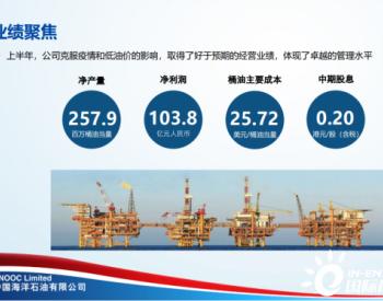 中海油业绩逆势上扬!净利润破百亿!