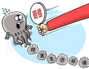 四川首例生态<em>环境损害赔偿</em>诉讼案开庭
