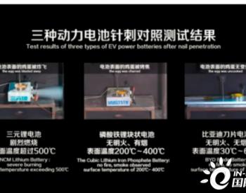 新能源汽车再起火 搭载<em>三元锂电池</em>的电动汽车还能买吗