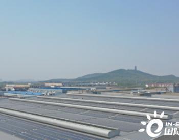 绿色发电站:大陆集团光伏发电项目在江苏张家港投入运营
