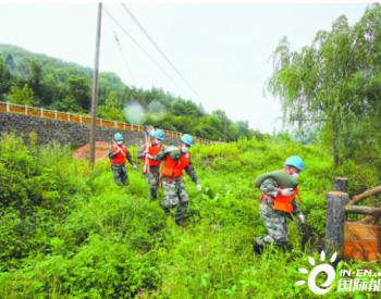 """台风""""巴威""""过境东北带来强风雨 国网辽宁、吉林电力全力修复受损电网设备"""