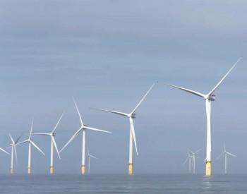 全球2020年上半年海风成绩单来了!中国抢眼!