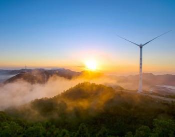 中标|东方风电、<em>上海</em>电气预中标!300MW海上<em>风电项目</em>开标