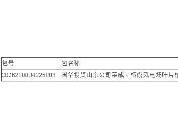 中标丨国华投资山东公司风电场叶片检查服务中标结果公告(荣成、栖霞风电场)