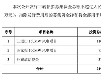 <em>嘉泽新能</em>2020H1业绩下降依赖融资扩张 负债高企利息高昂