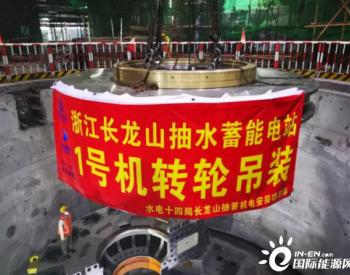 浙江长龙山<em>抽水蓄能</em>电站首台转轮顺利吊装