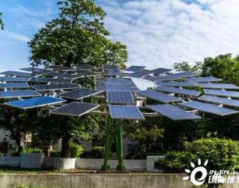 一棵农用<em>太阳能树</em> 每年生产12000-14000单位的清洁电力
