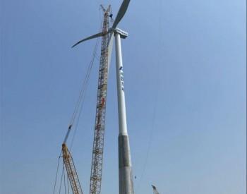 中国海装<em>首</em>个钢混塔架批量项目完成吊装