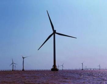 招标|单机要求≥4.5MW!江苏射阳300MW<em>海上</em>风电项目机组采购开始招标