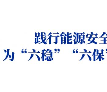 """<em>中国华能</em>舒印彪:践行能源安全新战略 为""""六稳""""""""六保""""注入新动能"""