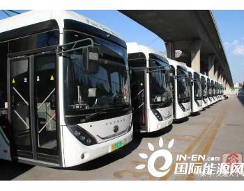 助力绿色出行!河南郑州公交再添一批氢燃料新能源公交车!
