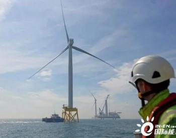 道达尔、现代重工和GIG就蔚山风电场项目确认合作