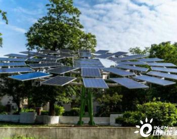 印度开发全球最大的<em>太阳能树</em>