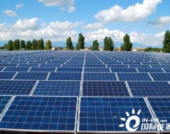 投资400万欧元的光伏电厂将落户纳尔瓦