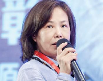 蒋莉萍:电网支撑脱贫攻坚 任务已全面完成