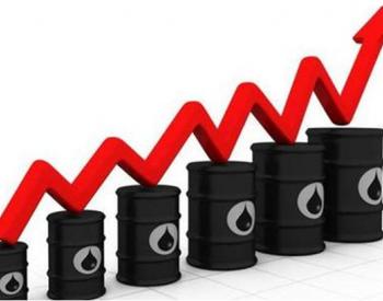 国际油价反弹,港股三桶油集体上涨