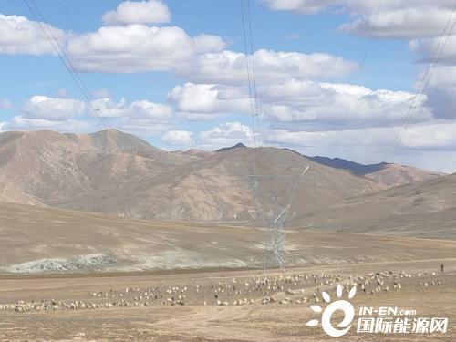 """世界海拔最高!广东和发""""电力天路""""阿里联网工程全线贯通"""