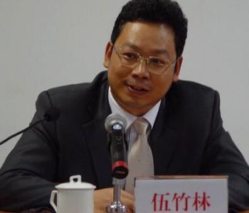 """广州发展董事长伍竹林:""""十四五""""末公司清洁能源占比再翻一番"""