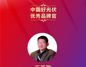 中国好光伏—优秀品牌官排名