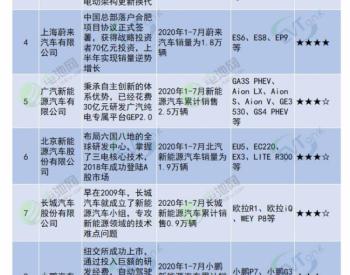 2020年中国新能源乘用车行业年度竞争力<em>品牌榜单</em>
