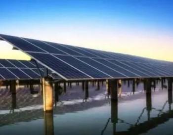 借行业红利,它成全球市值最高光伏企业,全球能源革命还要靠中国