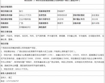 广西世纺投资集团有限公司热电联产项目