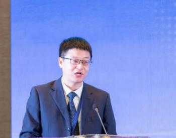 青海海西州能源局局长昂智:正在积极谋划实施多类型储能项目