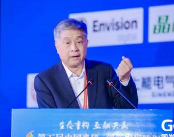 王勃华:2030年,光伏全球加权平均LCOE将降至0.04美元/kWh