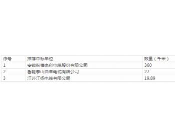 中标 | 华能贵州望谟县羊石农业<em>光伏工程</em>电缆设备采购中标结果公示