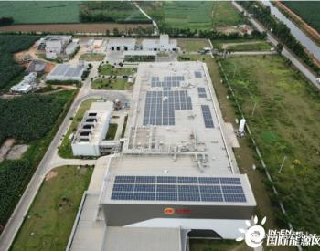 正大湛江0.6192MW<em>屋顶分布式光伏项目</em>正式并网发电