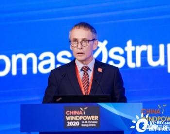丹麦驻华大使马磊:2020年上半年,丹麦近60%发电量来